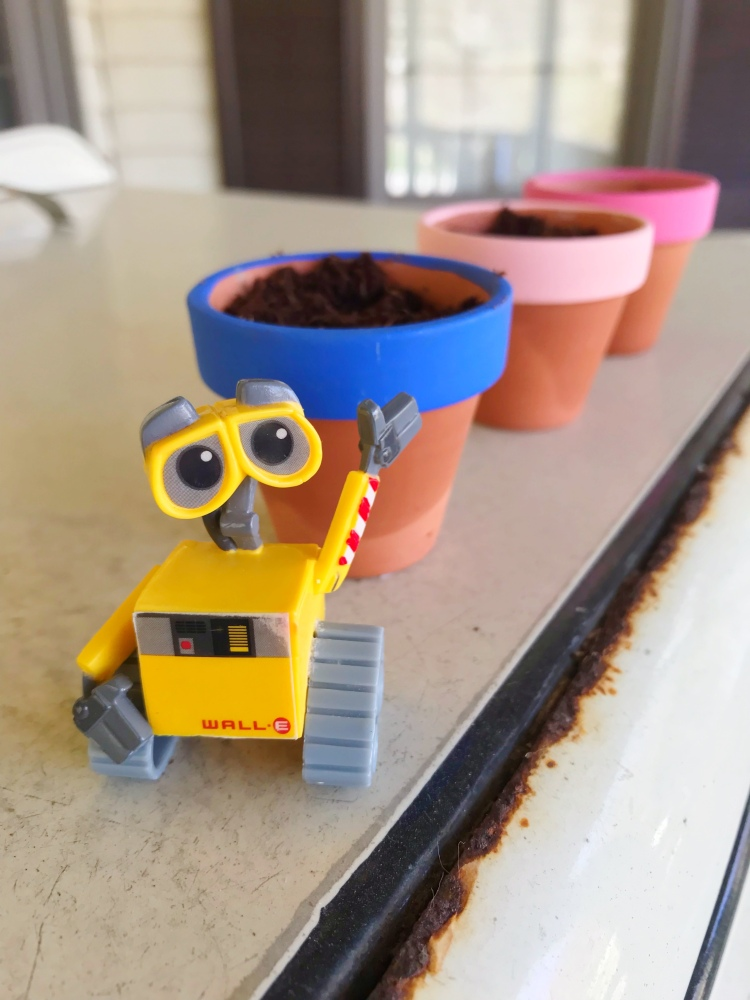 WALLE Movie Night - A Magical Kingdom called Home - Planted pollinators for our Disney Movie Night activity - Earth Day